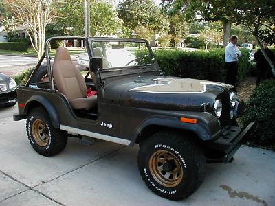 jeep cj golden eagle 1978 jeep cj 5 golden eagle for sale. Black Bedroom Furniture Sets. Home Design Ideas
