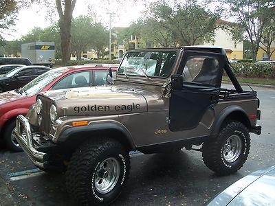 jeep cj cj 5 golden eagle 1979 cj 5 for sale. Black Bedroom Furniture Sets. Home Design Ideas
